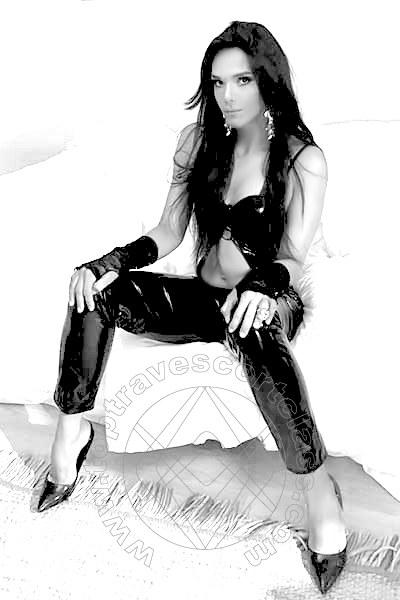 Cindy Xxl  TREVIRI 004915251397023